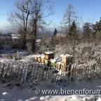 Ein Hauch von Winter, Jänner 2020