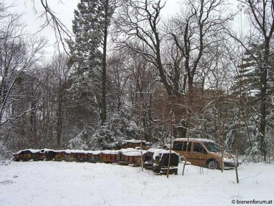 Hl.3 Könige 2010 011 -a.jpg