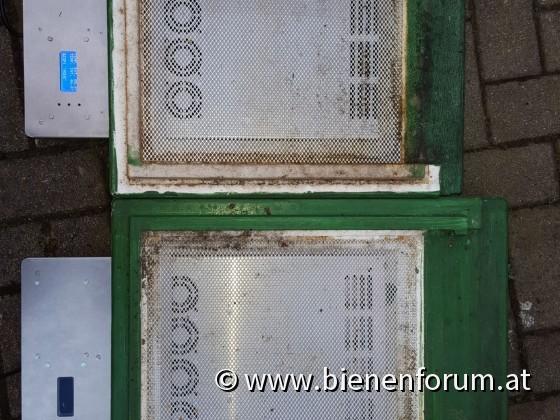 DNM & Frankenbeute mit der Bienenheizung