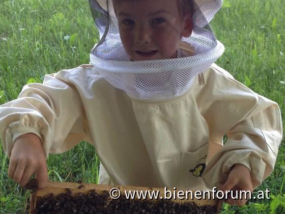 Nette Bienen