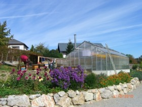 Glashaus für Apidea und Ableger
