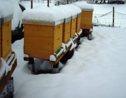 Bienenbeuten im Schnee