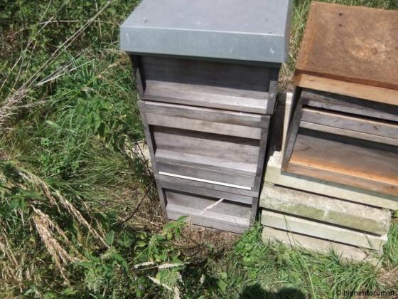 Bienenkiste 1
